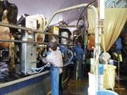有限会社西上加納農場